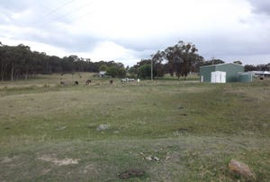 Lot 318, Bates Road, Torrington, NSW 2371