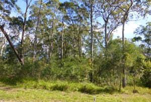 Lot 38 Gecko Road, Woombah, NSW 2469