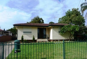 34 Niland Crescent, Blackett, NSW 2770