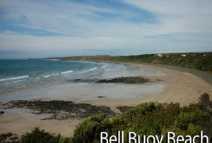 130 Bell Buoy Beach Road, Low Head, Tas 7253