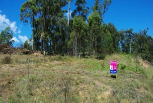 Lot 21 Bermagui-Cobargo Road, Coolagolite, NSW 2550