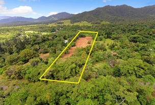 36 Mahogany Road, Daintree, Qld 4873