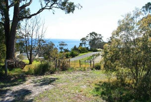 21 Beven Heights, Binalong Bay, Tas 7216