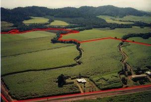 2098 Japoonvale Road ( Mena Creek), Tully, Qld 4854