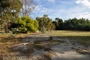 40 Richardsons Road, Sandford, Tas 7020