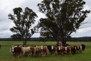 'Pineleigh' 130R Goan Creek Road, Ballimore, NSW 2830