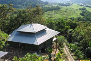3217R Mossman Daintree Road, Daintree, Qld 4873