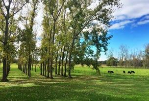 112 Manning River Drive, Taree, NSW 2430