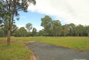 1 Magpie Place, Yarravel, NSW 2440
