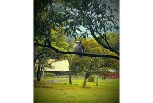 154 Wangat Trig Rd, Bandon Grove, NSW 2420