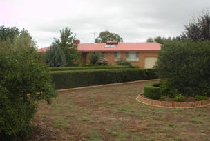45  BIRCH ROAD, Parkes, NSW 2870