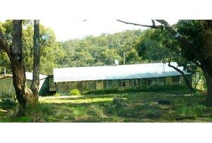 Lot 93,94,156, 4743 Snowy River Way, Dalgety, NSW 2628