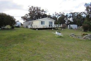 219 Glen Barra Rd, Watsons Creek, NSW 2355