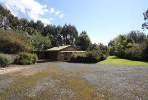 50 Johns Hill Road, Irishtown, Tas 7330
