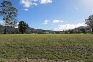 Lot 3 Rosedale Estate, Murrurundi, NSW 2338