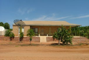 865 North River Road, Carnarvon, WA 6701