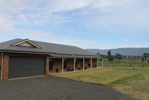 97 Allan Cunningham, Scone, NSW 2337