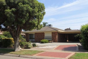 47 Parkview Drive, Swan Hill, Vic 3585