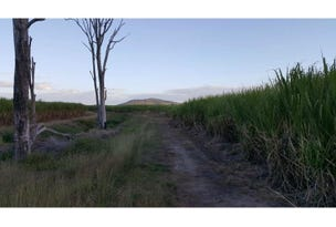 176 Upper Haughton Road, Horseshoe Lagoon, Qld 4809