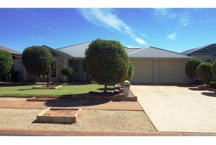 3 HOMESTEAD COURT, Whyalla Jenkins, SA 5609