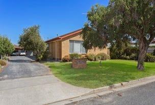 1 ,2 & 3/1099 Nowra Street, Albury, NSW 2640