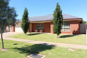 23 Dumosa Drive, Swan Hill, Vic 3585