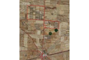 36 Haeusler Road, Lameroo, SA 5302