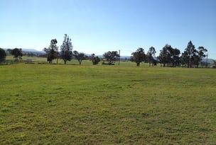 6 Matilda Circle, Morpeth, NSW 2321