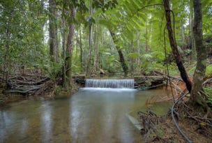 Lot 51 George Road Forest Creek, Daintree, Qld 4873