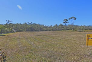 Lot 27 Parklands Drive, Gulmarrad, NSW 2463