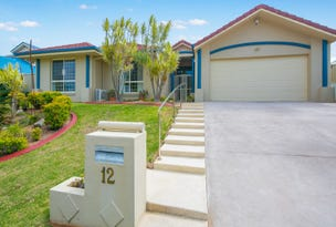 12 Wagan Place, Wellington Point, Qld 4160