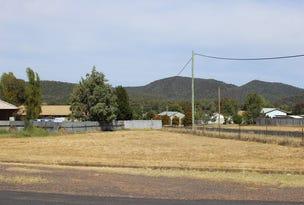 153 Thornton, Wellington, NSW 2820
