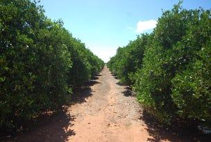 Farm 1716 Whites Road, Tharbogang, NSW 2680