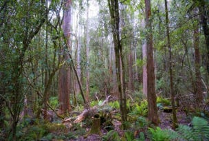 Lot 1C Blairs Road, Mole Creek, Tas 7304