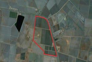 Farm 1955, Willbriggie, NSW 2680