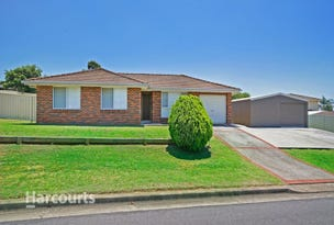 2 Handley Place, Raby, NSW 2566