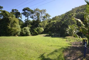 Lot 16 De Meio Drive, Lower Daintree, Qld 4873