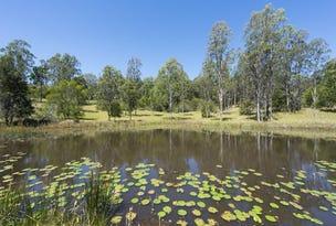 1120  Firth Heinze Road, Pillar Valley, NSW 2462
