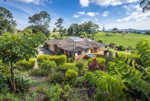 484 UpperWarrell Creek Rd Congarinni, Macksville, NSW 2447