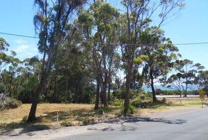 Lot 2 River Avenue, Heybridge, Tas 7316