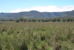 Pandora, Quirindi, NSW 2343
