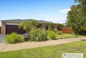 7 Wallaby Drive, Rosebud, Vic 3939