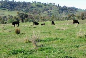 879 Woomargama Way, Woomargama, NSW 2644