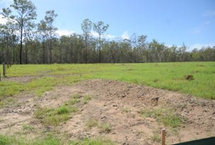 Lot 1 Burragan Road, Coutts Crossing, NSW 2460