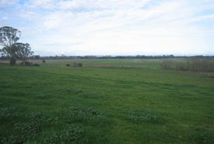647 Riverview Road, Heyfield, Vic 3858
