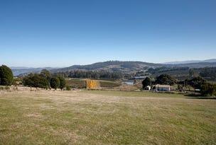 Lot 1, 49 Hillwood Jetty Road, Hillwood, Tas 7252
