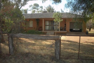 Trundle, Trundle, NSW 2875