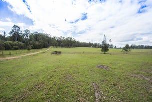 Lot 1 Orara Downs Lane, Levenstrath, NSW 2460