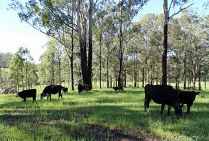 Lot 30 Chain O Ponds Road, Collombatti, NSW 2440