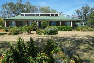 55 Christmas Tree Lane, Quirindi, NSW 2343